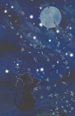 Cats and the moon - mit Lichtern und Klang