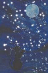 Cats and the moon - mit besonders vielen Lichtern und Klang
